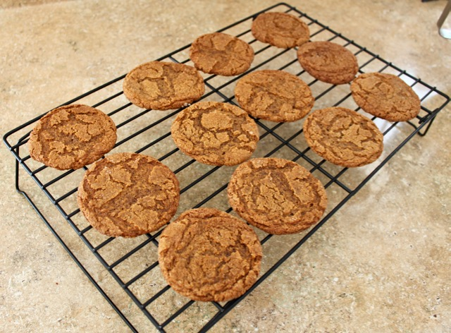 Perfect Fall Gingersnaps. Melt in your mouth, these cookies will be your most requested recipe! Come on over and get the recipe.